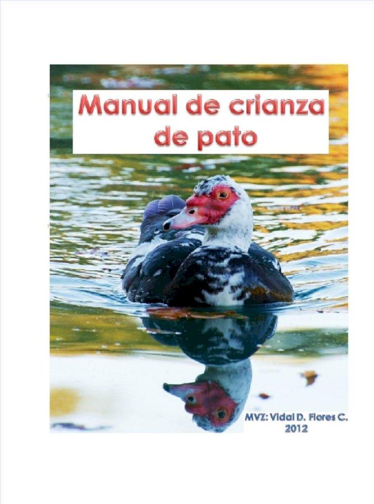 "Azul Marino Con Pluma de Avestruz primer grado 33-42CM 10 14-17/"" Diez"