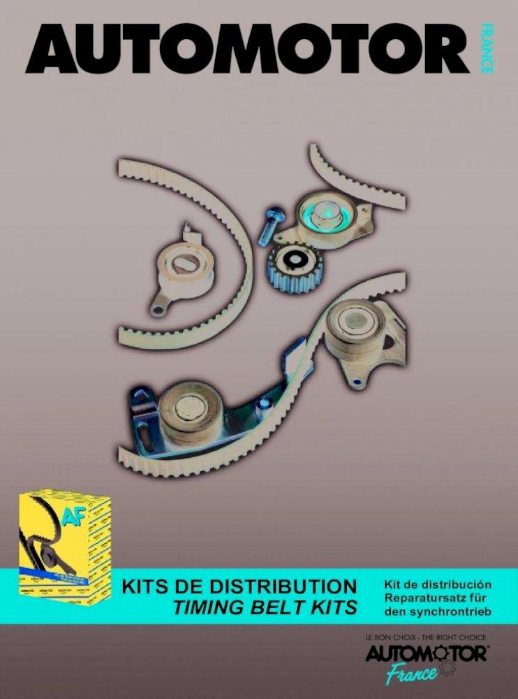 Dayco KTB196 Kit Distribution